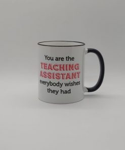 You Are The Teaching Assistant..